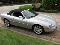 Jaguar 022