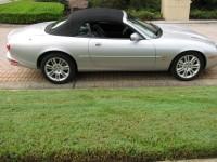 Jaguar 023