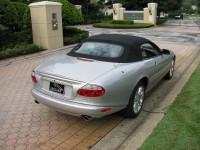 Jaguar 024