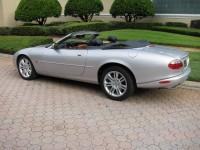 Jaguar 027