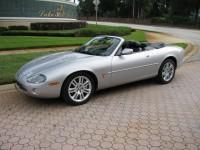 Jaguar 029