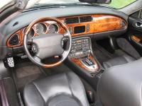 Jaguar 032