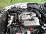 Jaguar 036