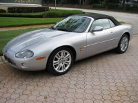 Jaguar 038
