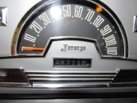 speedo 002