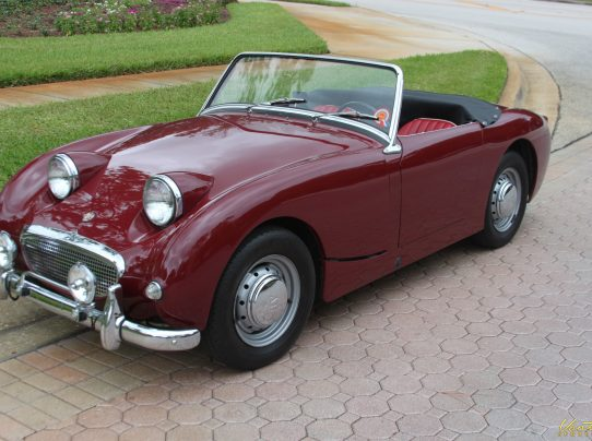 1045042 2010 Chevrolet Camaro Color And Model Breakdown further 1959 Austin Healey Bugeye Sprite together with Infiniti G35 Paint Code Location further R509 in addition Plum Head Parrot For Sale In Chennai 441667. on alfa romeo paint codes