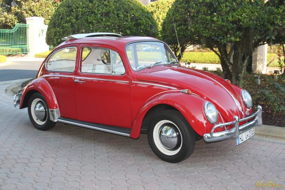 1965 Volkswagen Beetle --  SOLD!!