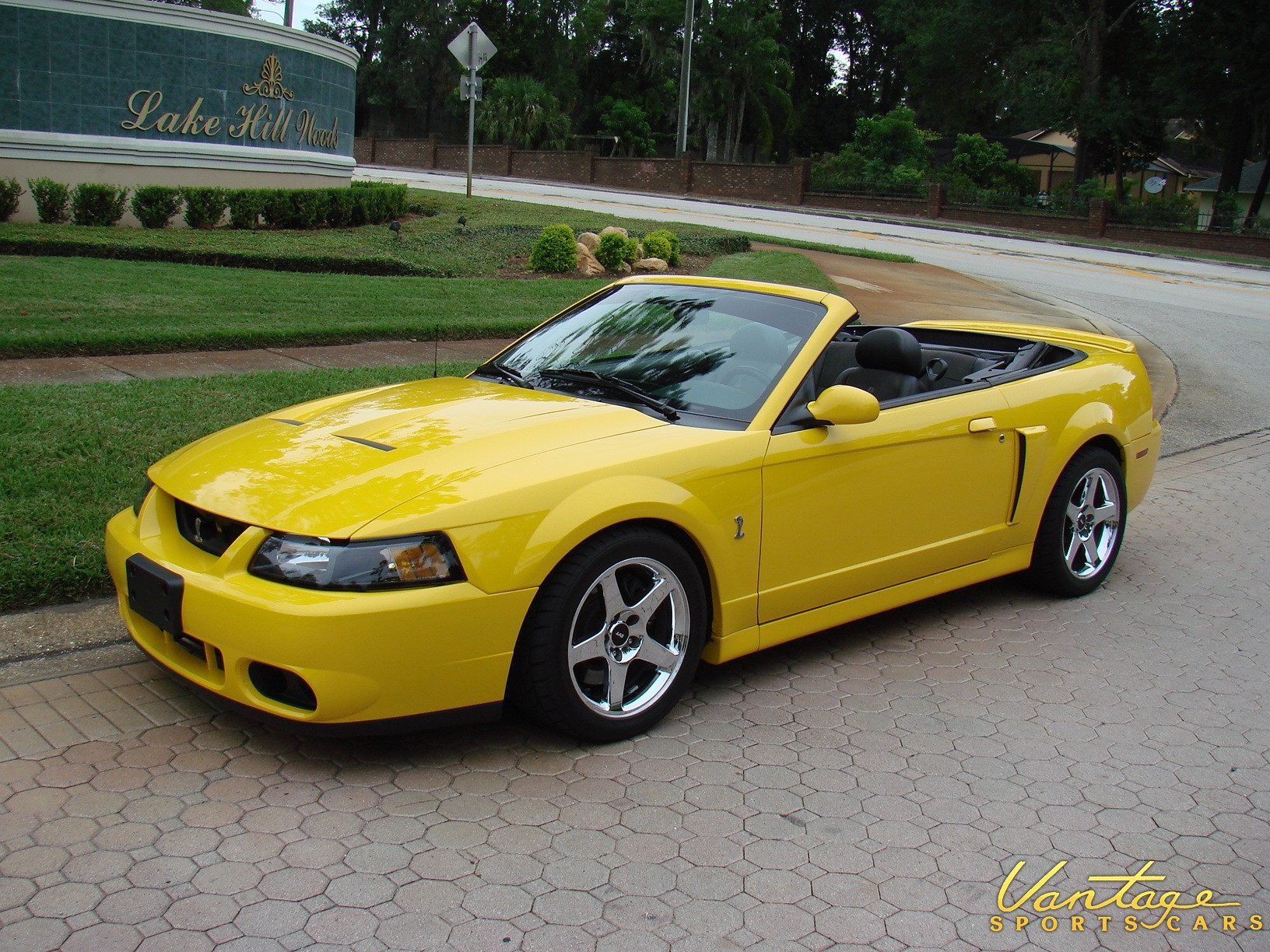 2004 Ford Mustang Cobra Convertible - SOLD! - Vantage Sports Cars | Vantage Sports Cars